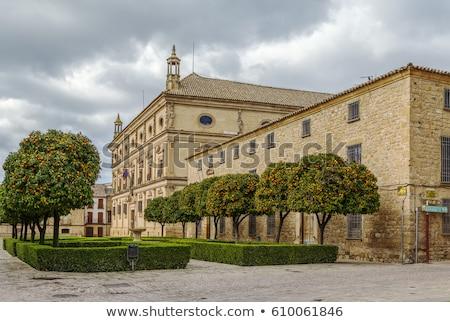 основной исторический квадратный Испания небе здании Сток-фото © borisb17