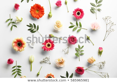Valentines day card with gerbera flower bouquet Stock photo © karandaev