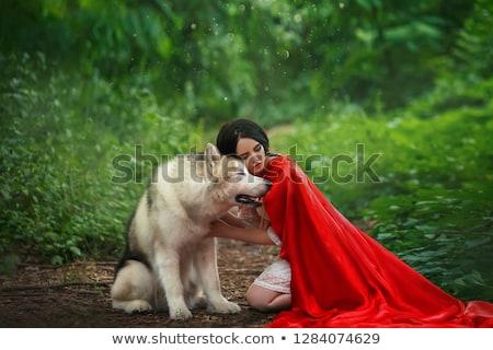 Mulher tocante seis cabeça cão belo Foto stock © vkstudio