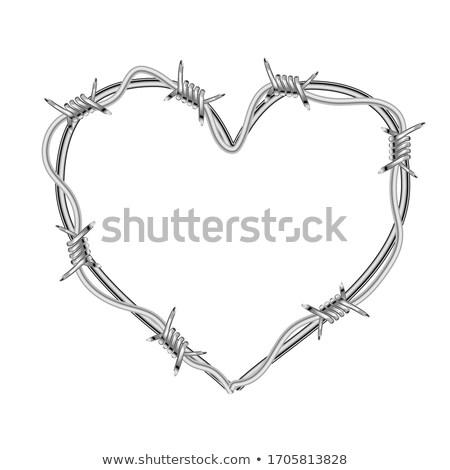 сердце реалистичный колючую проволоку белый Сток-фото © evgeny89