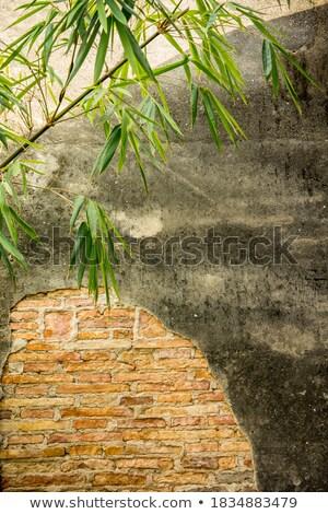 chinese green brick stock photo © cozyta
