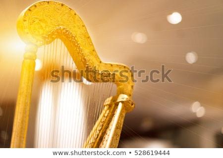 golden harp stock photo © anatolym