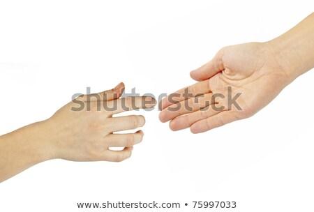 Women's hand in man's hand on white Stock photo © pzaxe