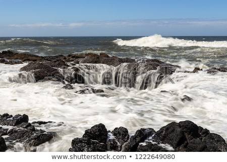 Rocky lava shoreline, Oregon coast. Stock photo © Rigucci