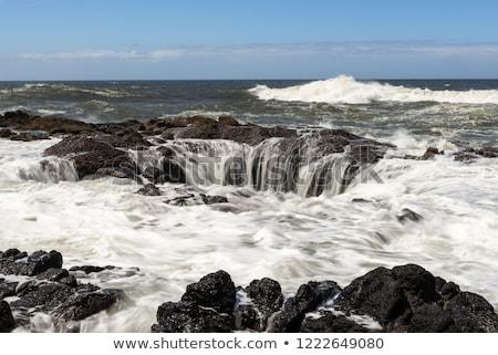 láva · Oregon · part · víz · óceán · zöld - stock fotó © Rigucci