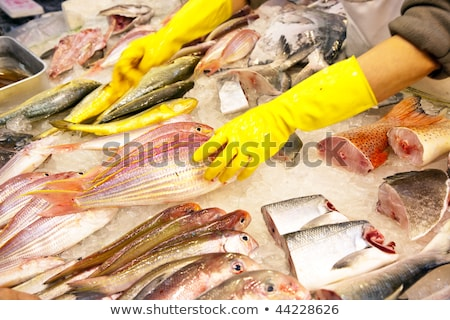 whole fresh fishes are offered in the fish market in asia Stock photo © meinzahn