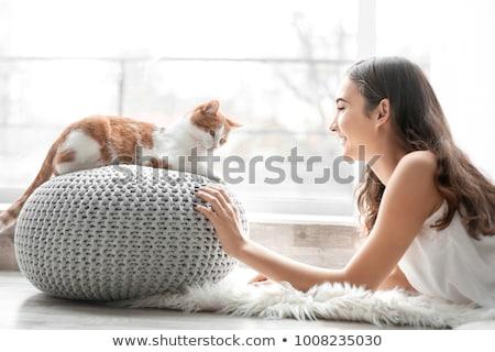 iki · kız · barbar · kedi · güzel · bir · kadın - stok fotoğraf © nejron