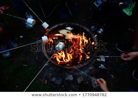 Foto stock: Marshmallow · fogueira · comida · madeira · noite · quente
