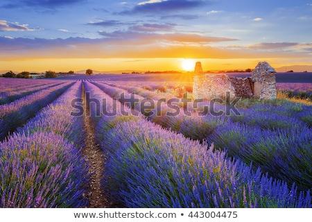 France paysage fran ais t maisons photo stock for Paysage francais