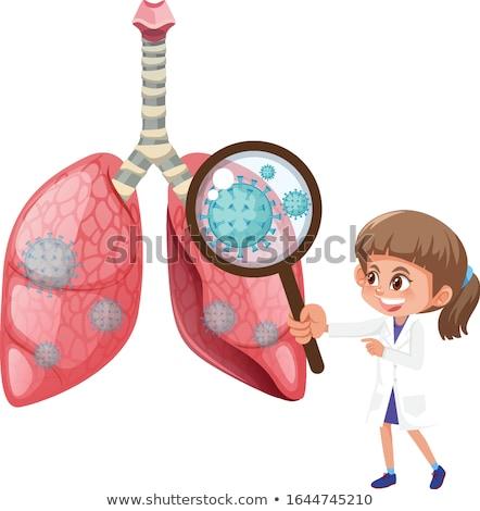 Grafikus kép mutat betegség emberi tüdő Stock fotó © HighwayStarz