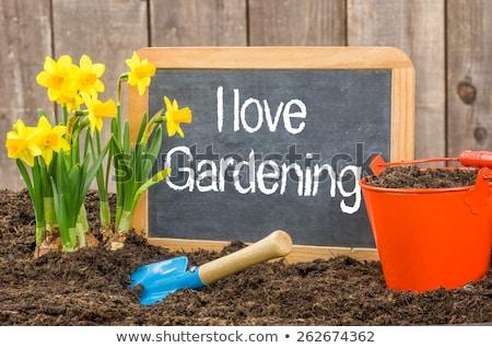 Iskolatábla virágágy szöveg szeretet kertészkedés virág Stock fotó © Zerbor