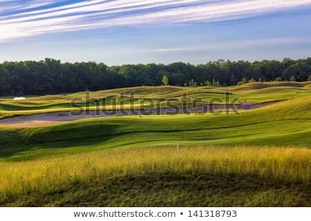 Perfect Wavy Green Ground On A Golf Course Foto d'archivio © Len44ik