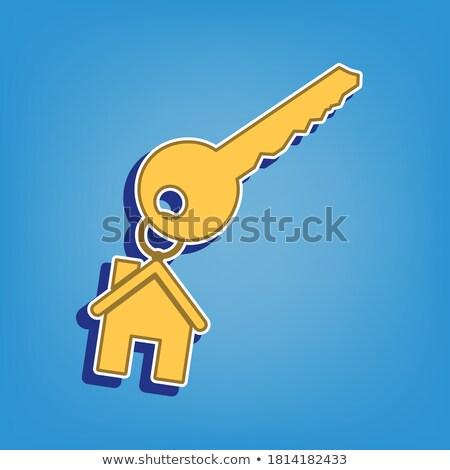 Key Sign Golden Vector Icon Button Stock photo © rizwanali3d