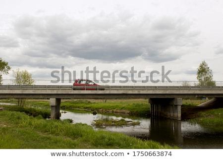 ahşap · köprü · çim · orman · doğa · dağ - stok fotoğraf © pedrosala