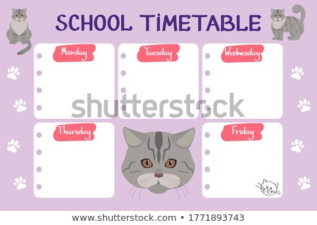 Empty template at the back of a cat Stock photo © bluering