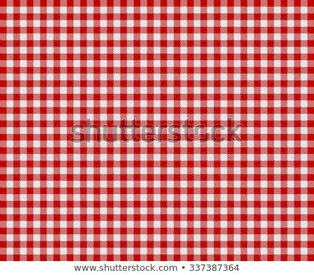 grey checkered dish towel Stock photo © Digifoodstock