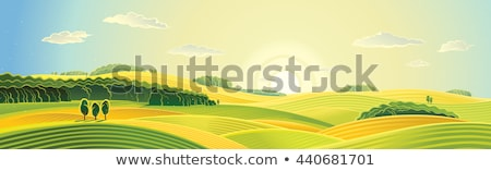 Stock photo: Vector autumn rural landscape with meadow and forest