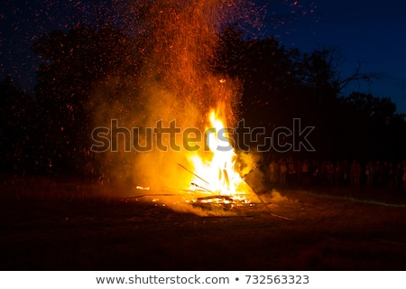 fire burns at night in a tourist camp stock photo © vlad_star