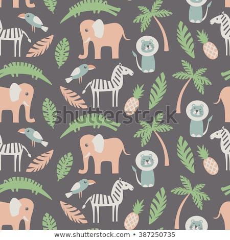 Elephant seamless pattern. African wild beast texture. Animal ba Stock photo © popaukropa