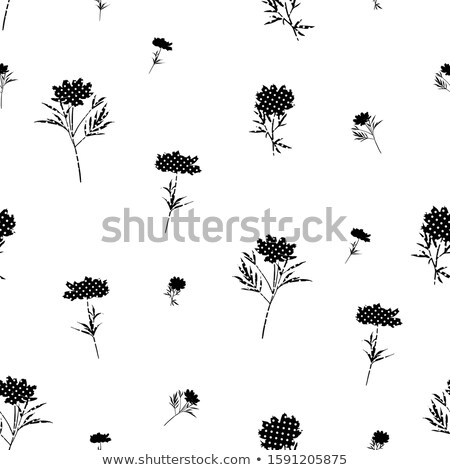 Modello di fiore varietà foglia fiori Foto d'archivio © Soleil
