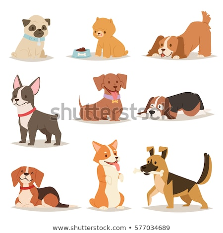 funny brown dog pet cartoon character Stock photo © izakowski