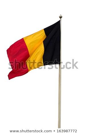 Bayrak yalıtılmış beyaz Belçika üç boyutlu vermek Stok fotoğraf © daboost