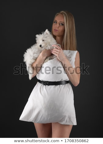 portrait of beautiful girl pretty white West Highland dog Stock photo © Lopolo