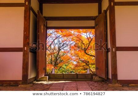 Güzel kapılar eski budist tapınak doku Stok fotoğraf © galitskaya
