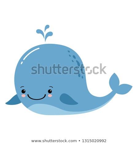 Ilustração bonitinho desenho animado baleia mar arte Foto stock © nezezon