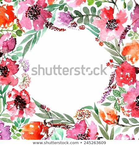 Resim çerçevesi çiçekler yalıtılmış şeffaf eğim Stok fotoğraf © cammep