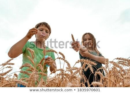 Stockfoto: Jongen · bubbels · gras · bloemen · voorjaar · gelukkig