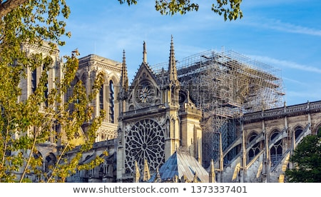 FRANCE - APRIL 15 2019 fire in the cathedral of Notre Dame Stock photo © natali_brill