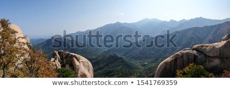 View from Ulsanbawi rock peak. Seoraksan National Park, South Corea Stock photo © dmitry_rukhlenko
