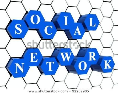 blu · finestra · social · network · rendering · 3d · scatole · testo - foto d'archivio © marinini