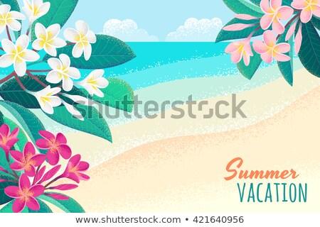 белый · цветы · розовый · дерево · моде · тропические - Сток-фото © adamson