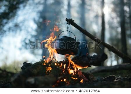 champignons · cuisson · alimentaire · mixte · beurre · sauvage - photo stock © taviphoto