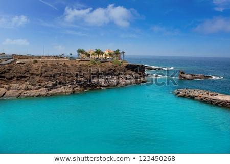 Strand tenerife natuur landschap zee Stockfoto © lunamarina