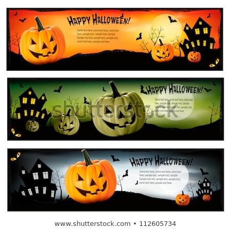 Ayarlamak üç halloween afişler örümcekler çerçeve Stok fotoğraf © AnnaVolkova