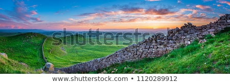 hadrians wall northumberland england stock photo © phbcz