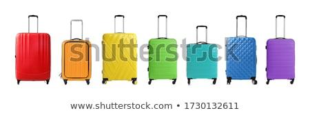 зеленый · чемодан · закрыто · белый · отпуск - Сток-фото © kyolshin