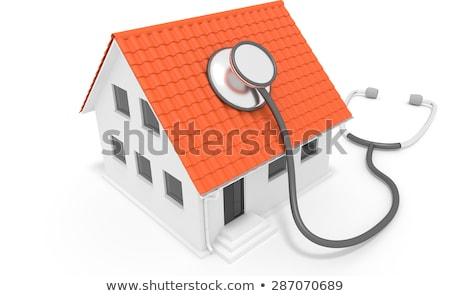 House Diagnostics Stock photo © 4designersart