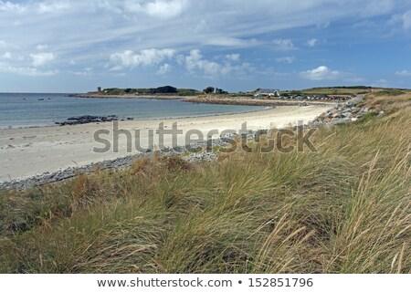 Le Grande harve Guernsey Stock photo © ollietaylorphotograp