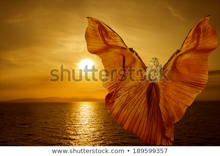 Dans kelebek kadın genç kadın renkli kostüm Stok fotoğraf © prill