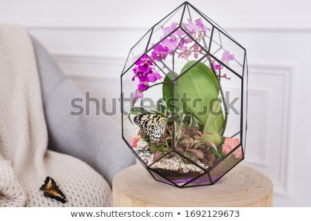 green sand-glass isolated on white background Stock photo © ozaiachin