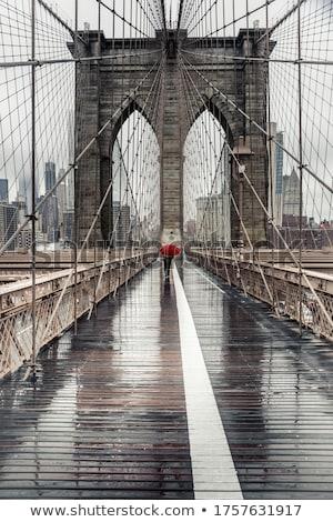 new york at a rainy day stock photo © magann