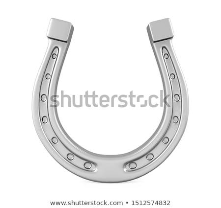 Metal horseshoe Stock photo © netkov1