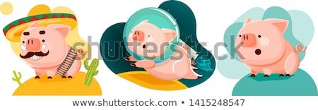 Aranyos disznó érzelem ikon illusztráció felirat Stock fotó © kiddaikiddee