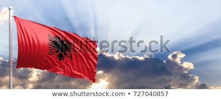 Bandeira Albânia ilustração 3d isolado branco Foto stock © MikhailMishchenko