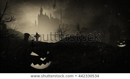 暗い 城 墓地 古い 映画 効果 ストックフォト © klss