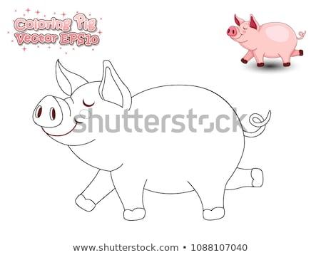 Flying · свинья · иллюстрация · улыбка · смешные · смеяться - Сток-фото © bluering